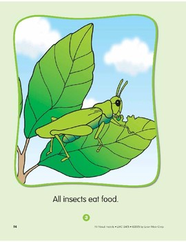 About Insects: Circle-Time Book