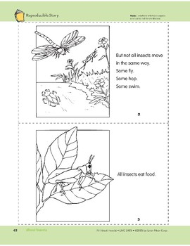 About Insects: Take-Home Book