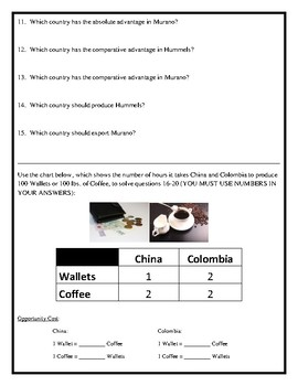 Absolute and Comparative Advantage (Input Method) Assignment w/ Answer Key