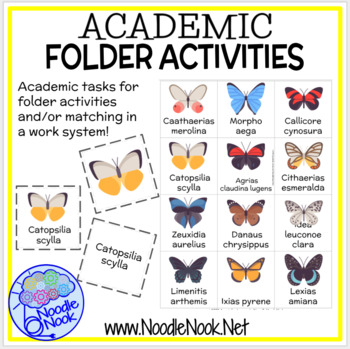 Academic File Folder Activities for Centers, SpEd, or Autism Units