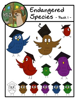 Academic Owls Rainbow Mega Pack -Clipart