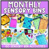 Academic Sensory Bin Bundle (Editable)
