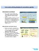 Accounting Principles & Conventions | Assessment | Worksheets