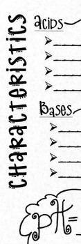 Acids & Bases Graphic Organizer