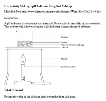 Acids, Bases and Indicators Common Core Reading, Writing and Lab Activity