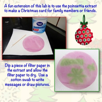 Christmas Science Lab: Using Poinsettia as a pH Indicator