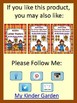 Acorn Dolch Primer Sight Word Flashcards and Posters