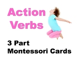 Action Verbs Montessori Three Part Vocabulary Cards