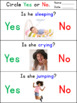 Action Words Yes/No Questions