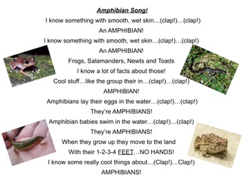ActivInspire - The Amphibian Song!