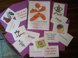 Active Body Systems & Nutrition Activity Book for Physical Education & Health