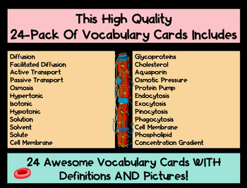 Active & Passive Cell Transport Vocabulary Cards WITH Definitions & Pictures