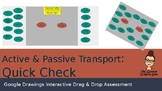 Biology Quick Check [Active and Passive Transport]