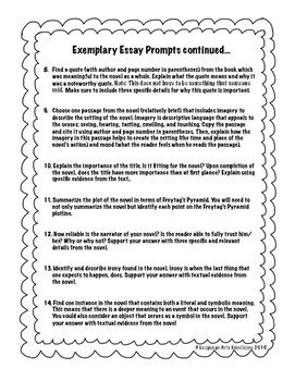 Differentiated Essay Prompts for use with ANY Novel!