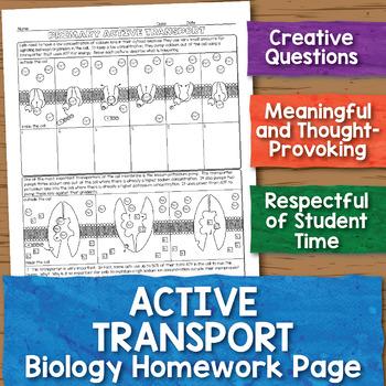 Active Transport Biology Homework Worksheet