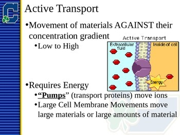 Active Transport Notes