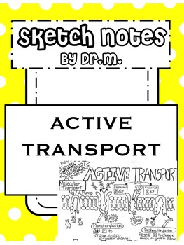 Active Transport Sketch Notes Doodle Notes W/Teacher's Guide & Student Notes!