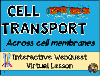 Active and Passive Cell Transport Across Cell Membranes We