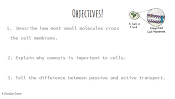 Cell Processes: Active and Passive Transport PPT- Editable!