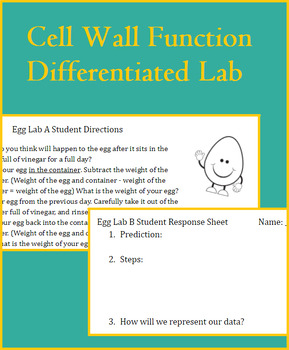 Cell Functions - Active and Passive Transport