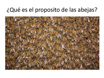 """Actividad Pre-lectura """"Las abejas de bronce"""""""