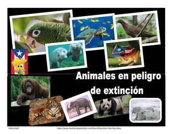 Actividades sobre: Animales en peligro de extinción y cuidado del ambiente.