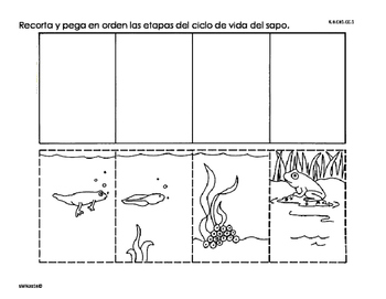 Actividades sobre La clasificación de los animales