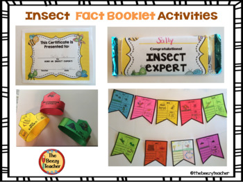 Activities for Insect Fact Booklets