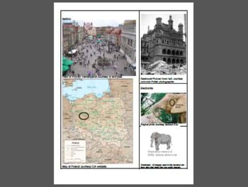 """Activities for Orson Scott Card's """"The Elephants of Poznan"""""""