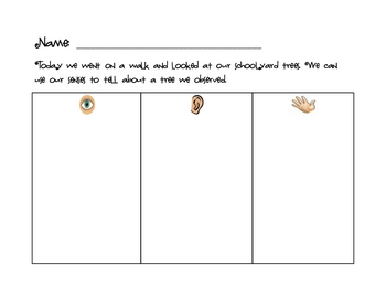 Activities to support Trees mini unit