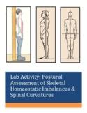 Activity: Postural Assessment of Skeletal Homeostatic Imbalances & Spinal Curves