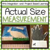 Actual Size Measurement Activity