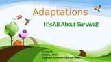 Adapations
