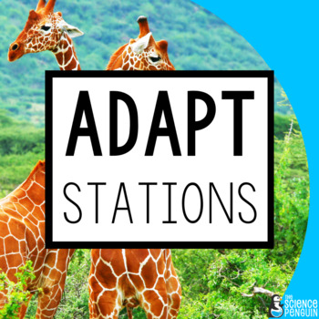 Adaptations Stations: A Big Science Stations Unit