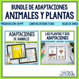 Adaptaciones de animales y plantas Bundle -  Distance Learning