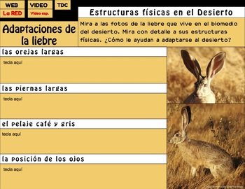 Adaptaciones de los Animales del Desierto para Google Drive®