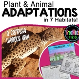Habitat and Adaptation Activities (Plant, Animal, Human)