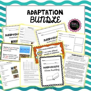 Adaptation Bundle