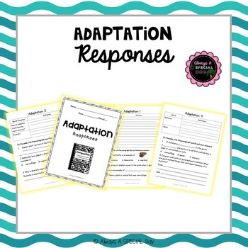 Adaptation Comprehension Responses