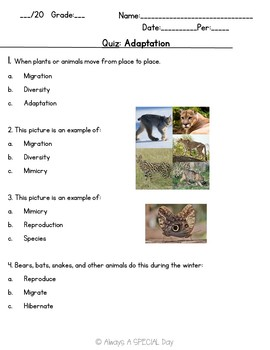 Adaptation Labs and Activities