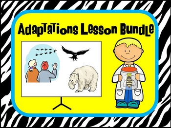 Adaptation Lesson Bundle including stations, cut and paste and task cards