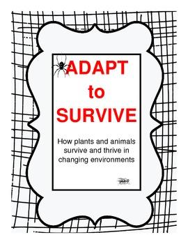 Adaptation Lesson Plan