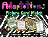Adaptation Card Sort