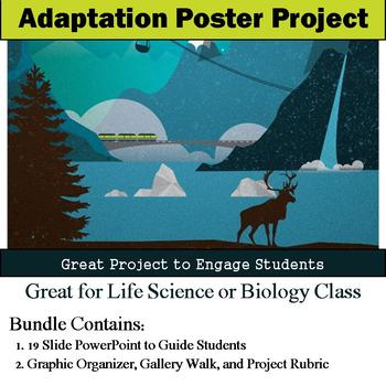 Plant and Animal Adaptations Poster Project
