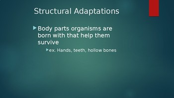 Adaptation PowerPoint