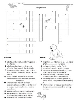 Adaptation Review Crossword Puzzle and Key