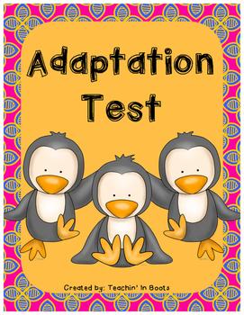 Adaptation Test (S4L2)
