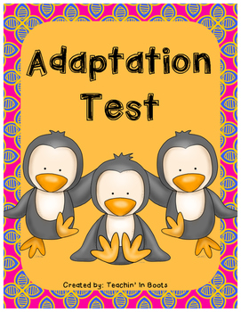 Adaptation Test (S4L2)