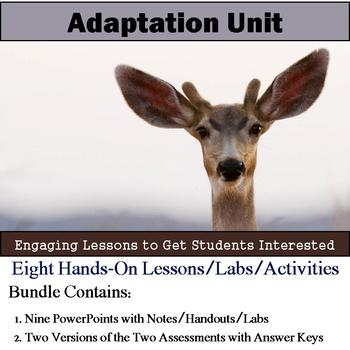 Adaptation Unit (Nine Lesson Bundle with Notes, Activities, and Assessment)