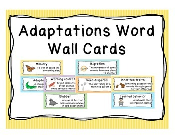 Adaptation Word Wall Vocabulary